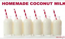 Homemade Coconut Milk savorylotus.com