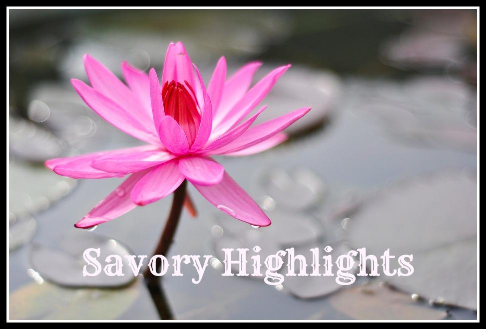savoryhighlight