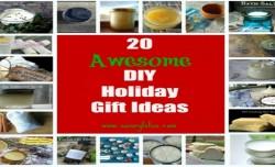 20 Awesome DIY Holiday Gift Ideas  savorylotus.com