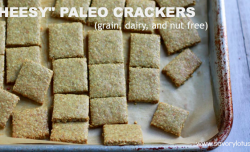 """Cheesy"" Paleo Crackers (grain, dairy and nut free) savorylotus.com"