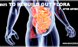 6 Ways to Rebuild Gut Flora After Antibiotics : savorylotus.com