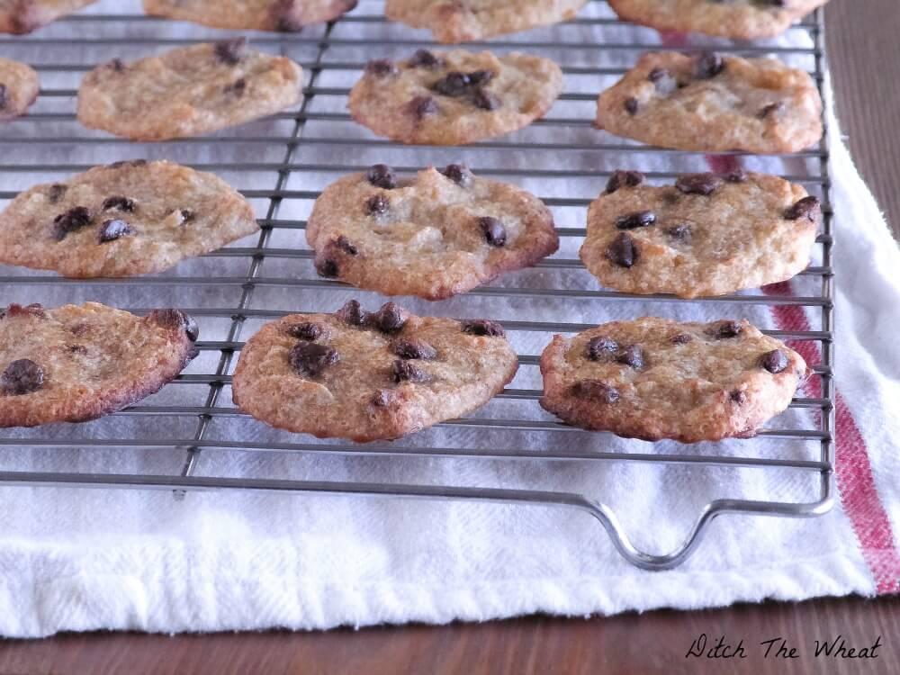 Banana-Chocolate-Chip-Cookies-1