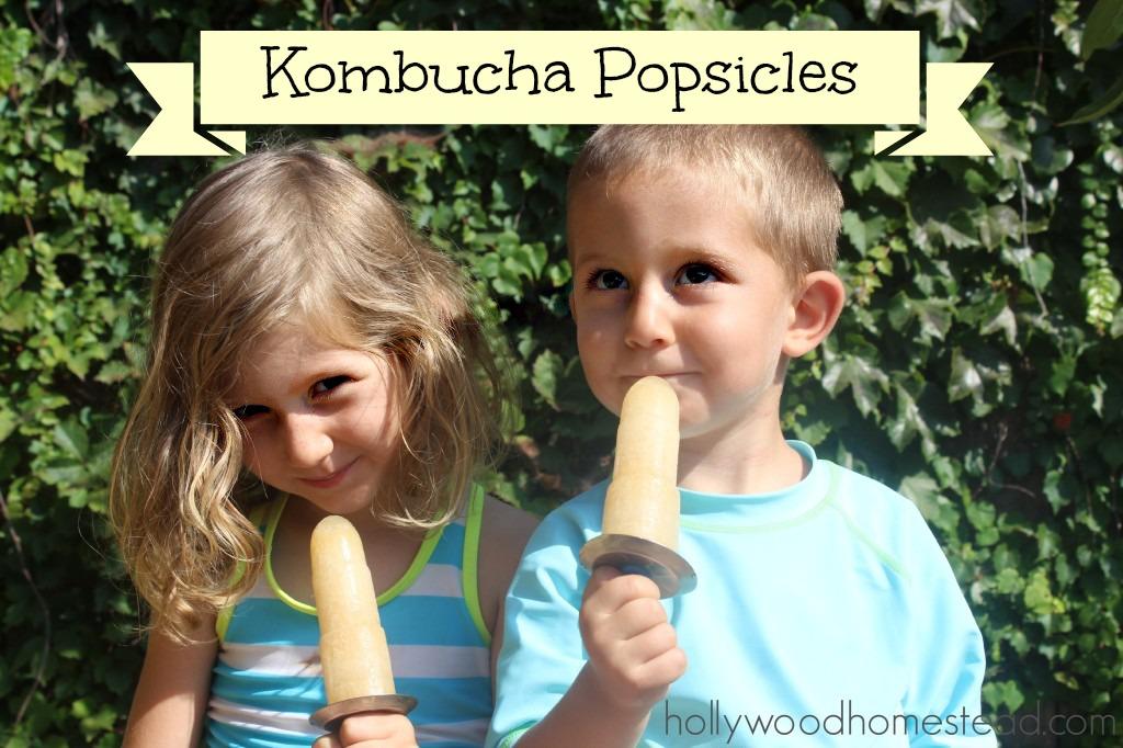 KombuchaPops1