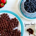 Mini Chocolate Waffles (grain free, gluten free, nut free, paleo) | savorylotus.com