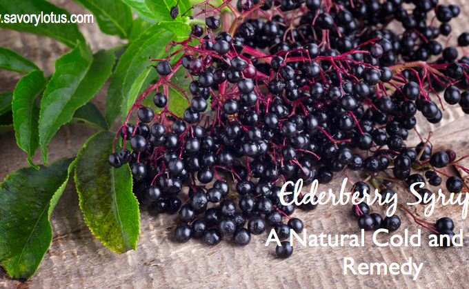 Elderberry Syrup: A Natural Cold and Flu Remedy