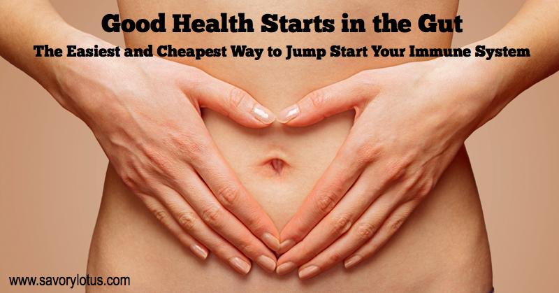 gut health, digestion, fermented foods, antibiotics