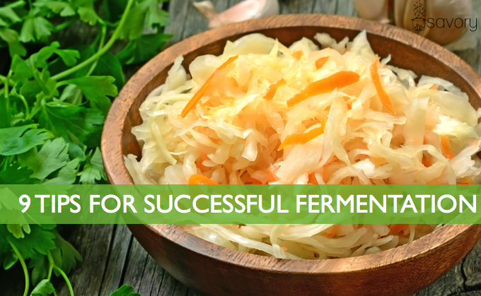 9 Tips for Successful Fermentation