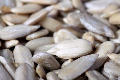 All About Grain Free Flours ~~ www.savorylotus.com