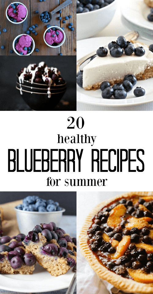 20 Healthy Blueberry Recipe for Summer - www.savorylotus.com