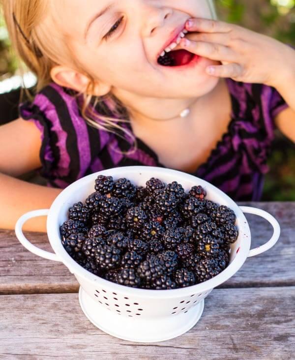 Simple Blackberry Peach Crisp (gluten free) ~~ www.savorylotus.com
