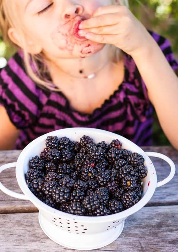 Simple Blackberry Peach Crisp (gluten free) ~~~ www.savorylotus.com