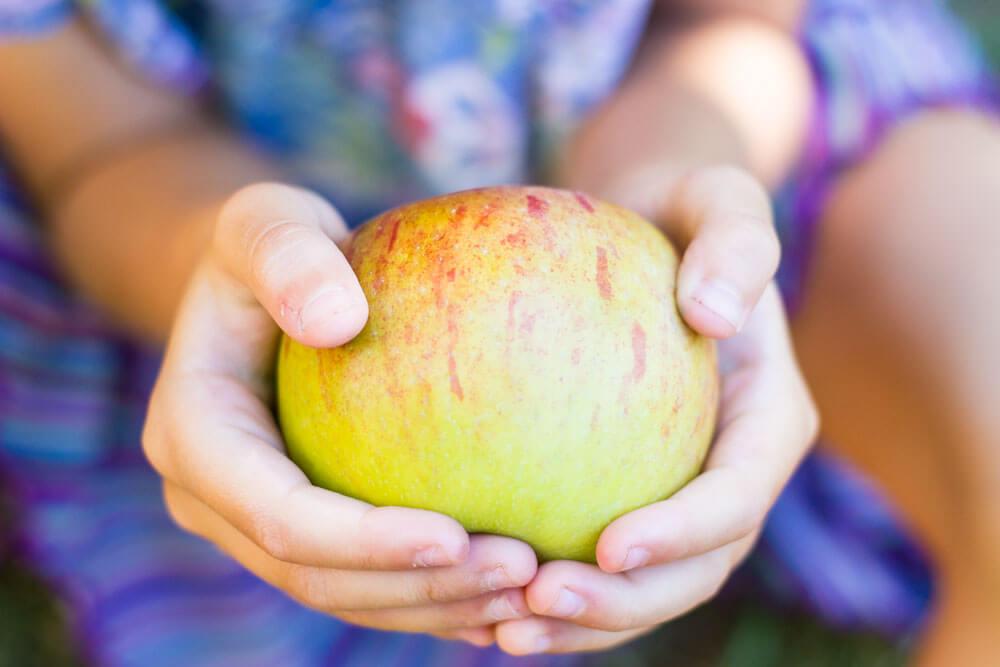 Cardamom Apple Dutch Baby (gluten free) \\\ www.savorylotus.com