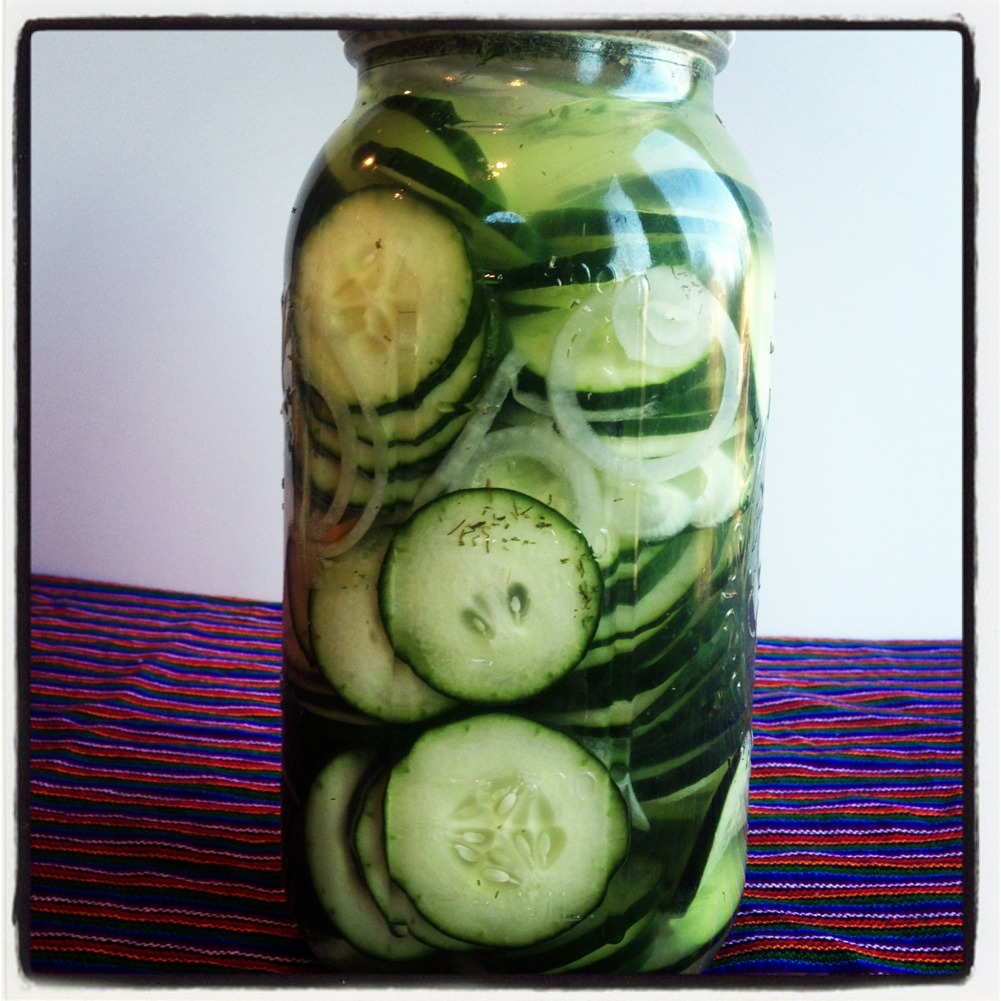 Easy Fermented Cucumbers (Pickles)