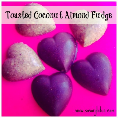 toasted coconut almondfudge