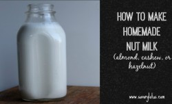 Homemade Nut Milk savorylotus.com