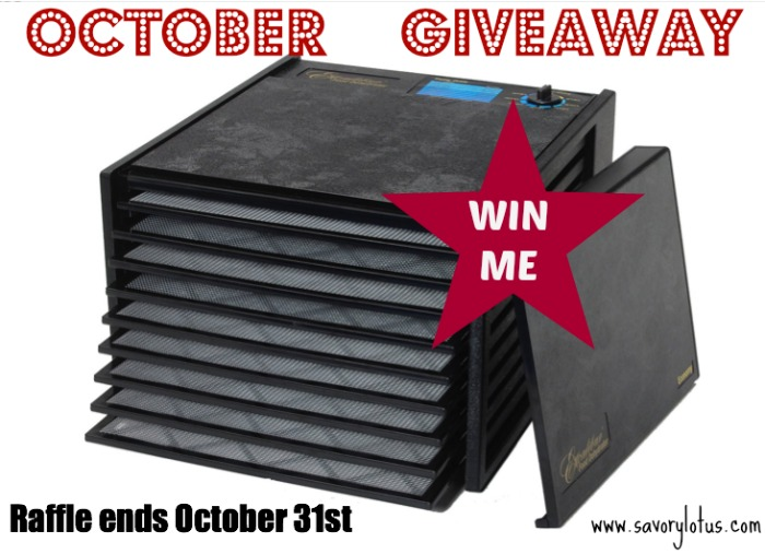 OCTOBER GIVEAWAY: Excalibur Dehydrator