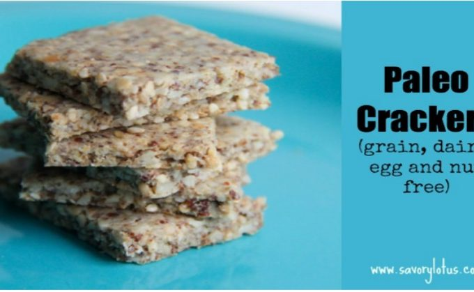 Paleo Crackers (grain, dairy and nut free)