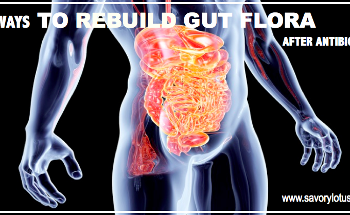 6 Ways to Rebuild Gut Flora After Antibiotics : savorylotus.com