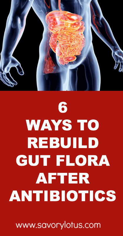 6-Ways-to-Rebuild-Gut-Flora-After-Antibiotics