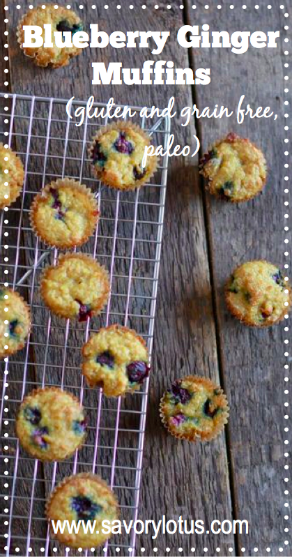 Blueberry Ginger Muffins (gluten and grain free, paleo) - savorylotus.com