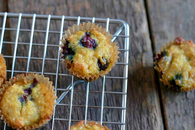 Blueberry Ginger Muffins (gluten and grain free, paleo) ~ savorylotus.com