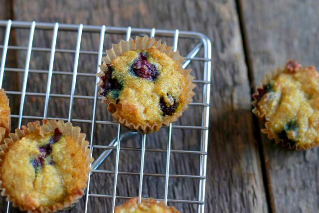 Blueberry Ginger Muffins (gluten and grain free, paleo) ~ savorylotus.com