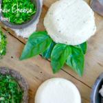 Herbed Cashew Cheese (dairy free, paleo) | savorylotus.com