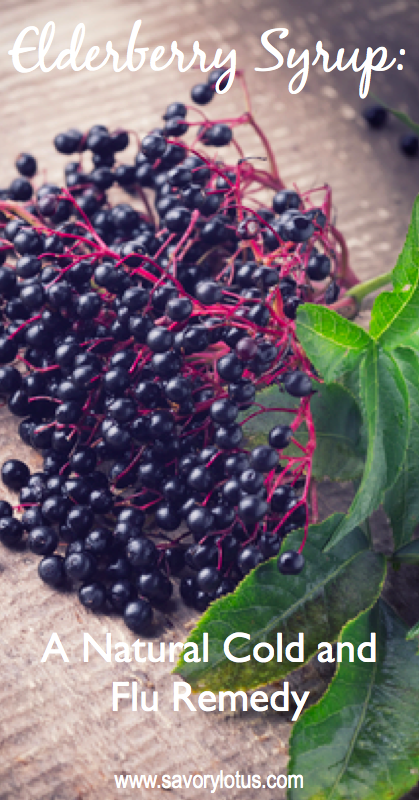 elderberries/ cold and flu / natural remedies