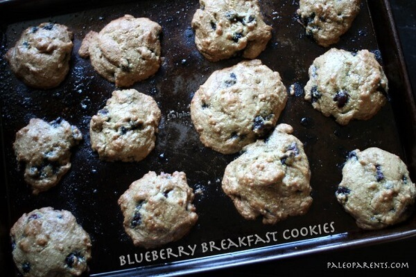 Blueberry-Breakfast-Cookies-by-PaleoParents (1)