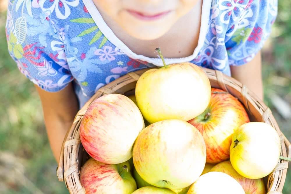Cardamom Apple Dutch Baby (gluten free) \ www.savorylotus.com