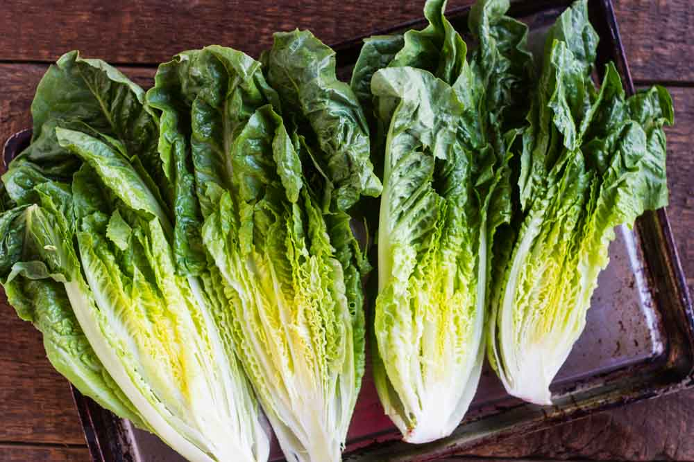 Grilled Romaine Salad with Creamy Turmeric Dressing (dairy free) /// www.savorylotus.com