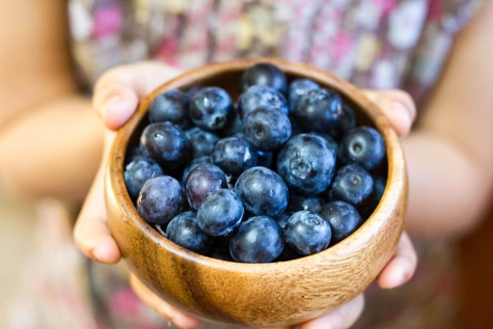 Skillet Blueberry Coffee Cake (gluten free, grain free, paleo) \ www.savorylotus.com