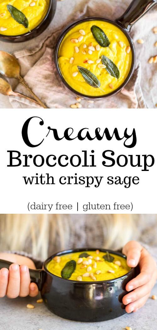 Creamy Broccoli Soup (dairy free) - www.savorylotus.com