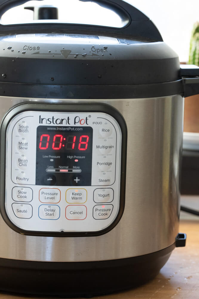 Instant Pot with 18 minutes on times