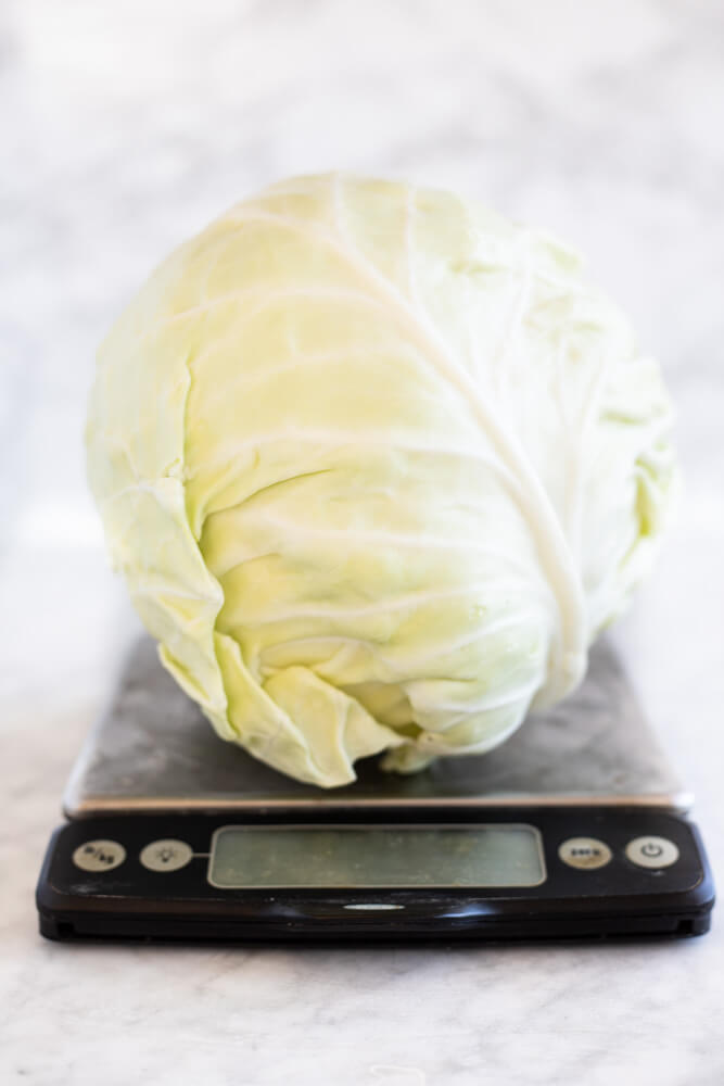 head of cabbage on scale