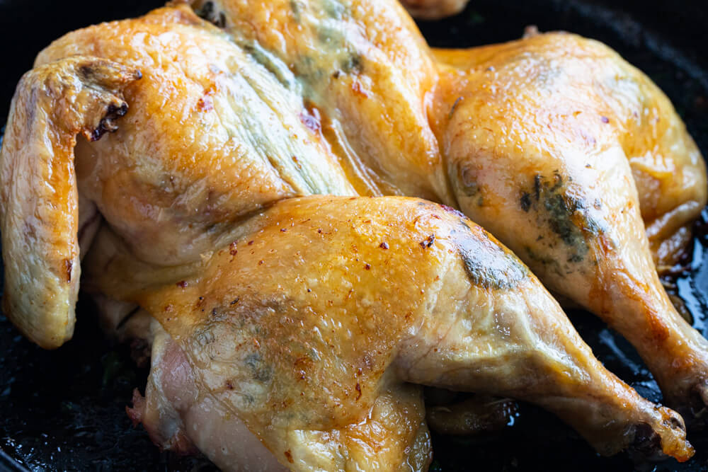 close up of a roasted whole chicken